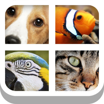 Close Up Animal Quiz - Cat & Dog Trivia Games Free - Guess the animal from the zoomed in photo as fast as you can... simple!The ultimate animal guessing game, from the makers of the hit Close Up Pics - join more than 15 million Close Ups players!SIMPLE, FUN AND ADDICTIVE GAMEPLAY- No complicated rules, just start playing and having fun!- Over 150 animals to guess from with high quality photos!ABOUT MEDIAFLEX GAMESWith over 20 million downloads and growing, Mediaflex Games has established itself as leading a creator of puzzle and trivia games for kids and adults.Visit us: http://www.mediaflex.coLike us: http://www.facebook.com/MediaflexGamesCONTACT USLet us know what you think! Questions? Suggestions? Technical Support? Contact us at: apps@mediaflex.coIMPORTANT MESSAGE FOR PARENTSOur games are free to play but certain in-game items may be purchased for real money. You may restrict in-app purchases by disabling them on your device.