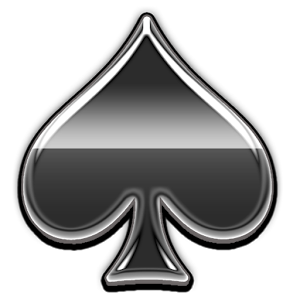 Spades! - Play the card game Spades on your phone. This new version features•Intuitive click or drag  interface•Support 5 Game variations: Partner,Solo, Suicide, Mirror and Whiz•Options for Jokers and 2\'s high deck•Option for passing cards on nil and blind nil bids•Customize display with 3 decks, 2 trick orientations, and multiple backgrounds•improved AI and score summary•Support for options like blind nil bidding, scoring of nil bids, scoring of bags, initial lead card,requiring spades to be broken, and more.1.7 contains online play. It is still in beta testing and the server will be up and down and the games might be a bid flakey for the next couple of weeks. Please email me any issues that you have. Thank youUPGRADE NOTE:There is a pref to turn off autoplaying when you have 1 legal move if you don\'t like itIf your shortcut stops working, either move the app from the SDCard to main memory or delete the shortcut and make a new one. Android doesn\'t seem to update the shortcut when an app is updated from the market.FAQQ)  Why did I just lose 100 points?A) In standard spades if you get 10 over tricks, you lose 100 points. You can turn the bag penalty off in the settings.Q) The game is bidding for me?A) Please double check that you are not playing Mirror spadesQ) Why does the app need the accounts permissionA) To allow the user to login with their google Plus accountWe are trying out AppLovin as our ad provider. There is a preference dialog to turn them off if you prefer the older ads. So far the ads have been more revelant and higher quality than other providers. Please provide your feedback on them.We have partnered with AppLovin Corporation to bring you a more socialexperience including but not limited to the ability to more easilyinvite your friends to our app, alerts from your friends, socialadvertising, etc. To serve you a better experience we may share yourpersonal data with AppLovin, and use of your data is subject toAppLovin\'s Privacy Policy and Terms of Use. Both policies areavailable at www.applovin.com.