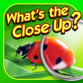 What's the Close Up? - Close Up Pics Photo Quiz - How good are you at identifying zoomed in pics? Can you solve all of the extreme close ups in What's the Close Up?